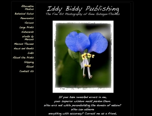 Iddy Biddy Publishing